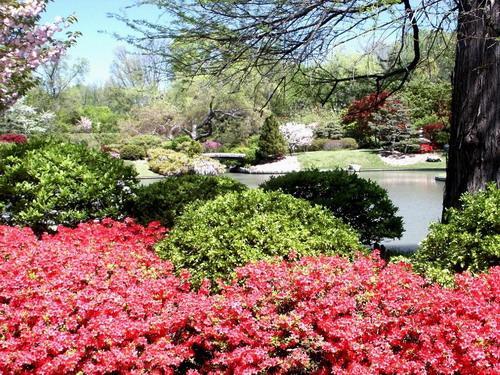 图片赏析 七 项目分析 绿城智库 重庆园林景观设计公司,重庆